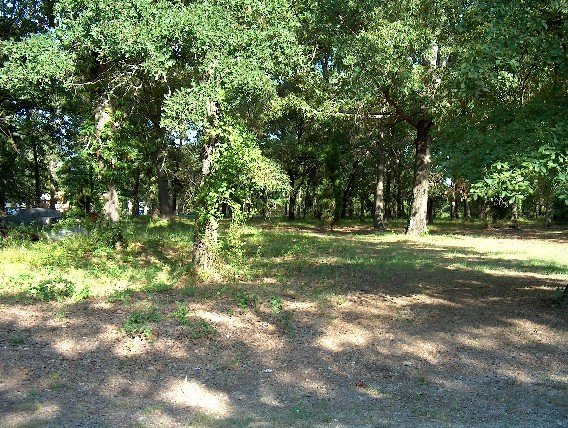 120: Point La Vista, TX Cedar Creek Resort Lot