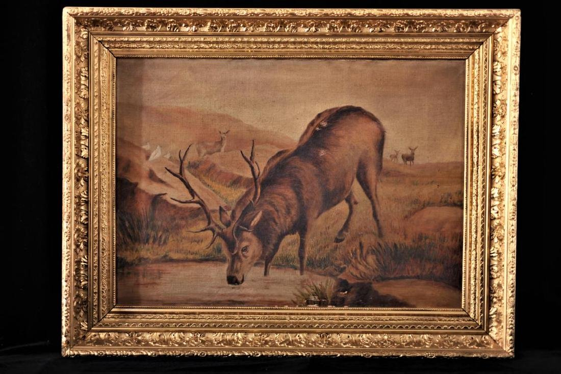 Artist unknown, oil on canvas of an elk in gilt frame