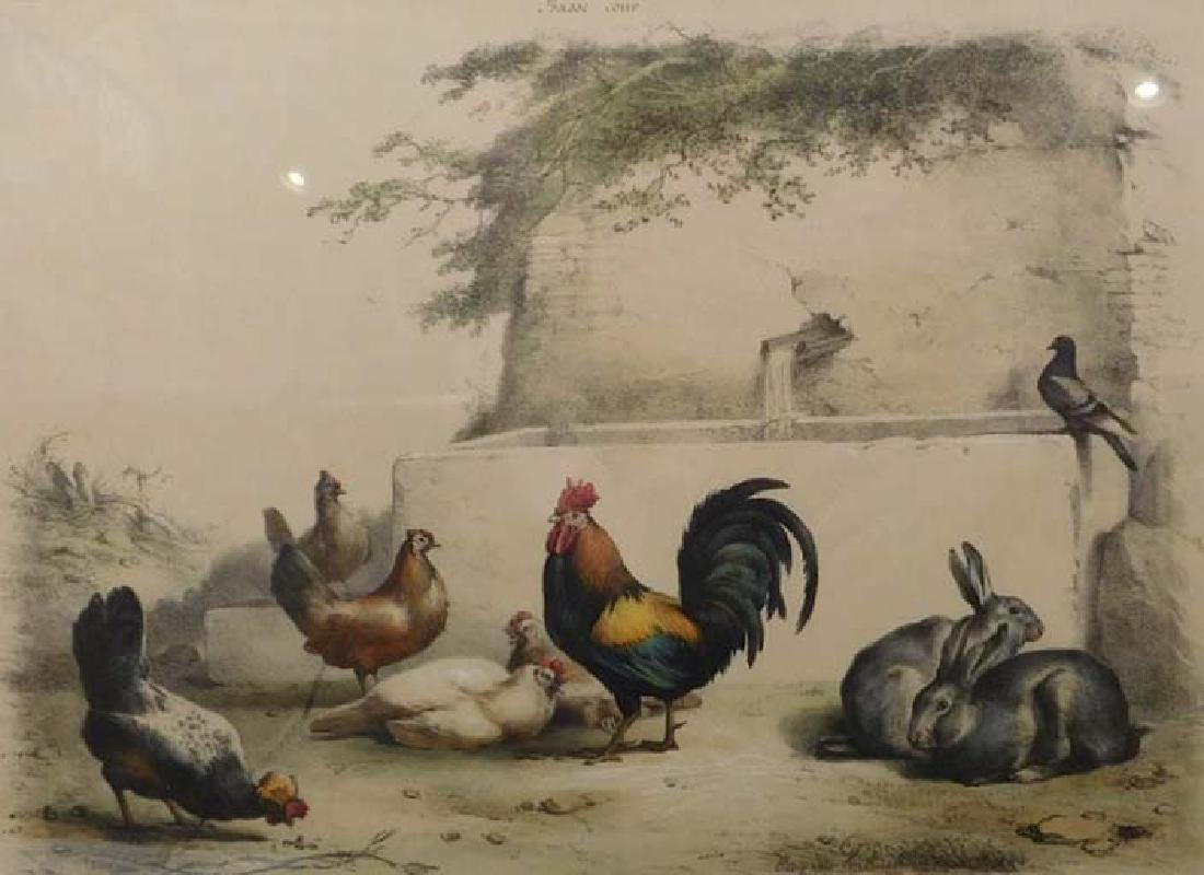 Signed Eugene: Rooster and Rabbits in the Yard