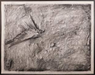 Gibbs Milliken (American, 1935-2007): Wounded Bird
