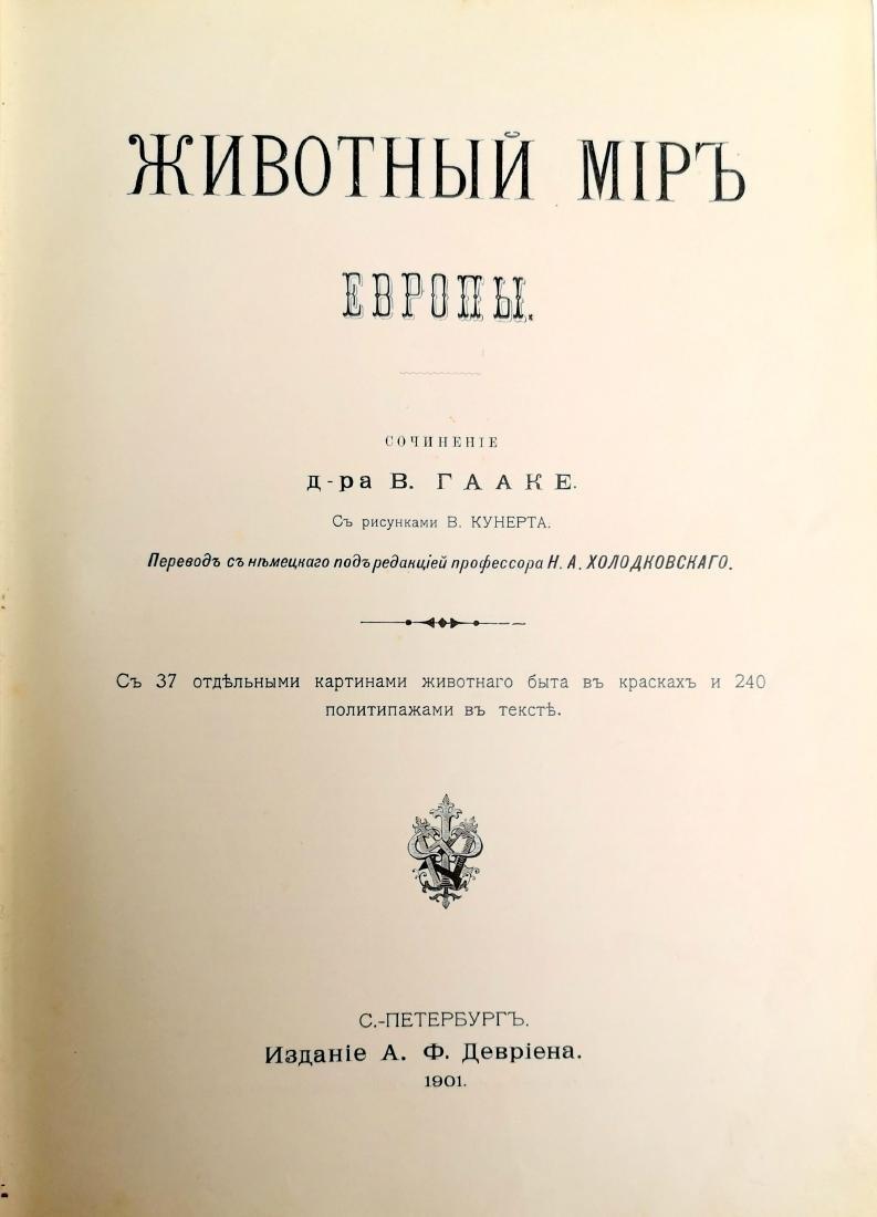 Animal World 1901 - 1902 Russian Russia