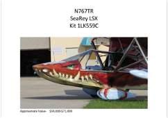 SeaRey LSX Amphibian Plane With Custom Hauler