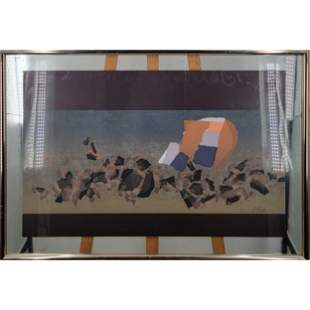 Limited Ed. Pencil Signed Lithograph Expensive Framing