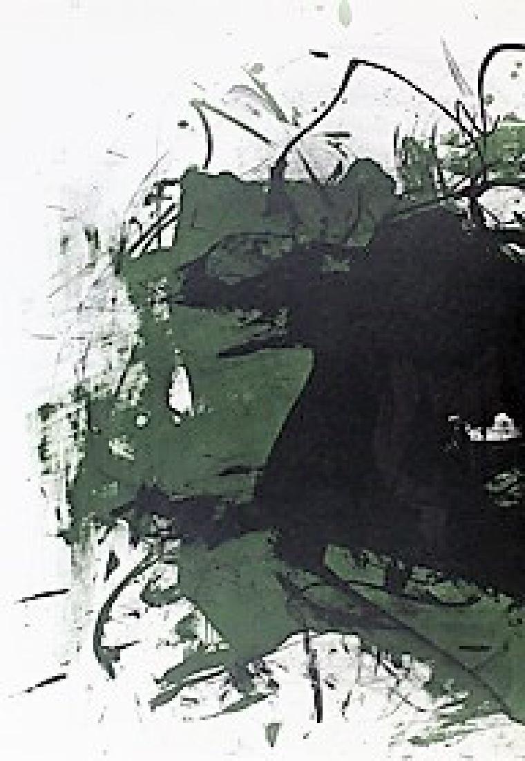 Original Lithograph Walasse Ting - 3