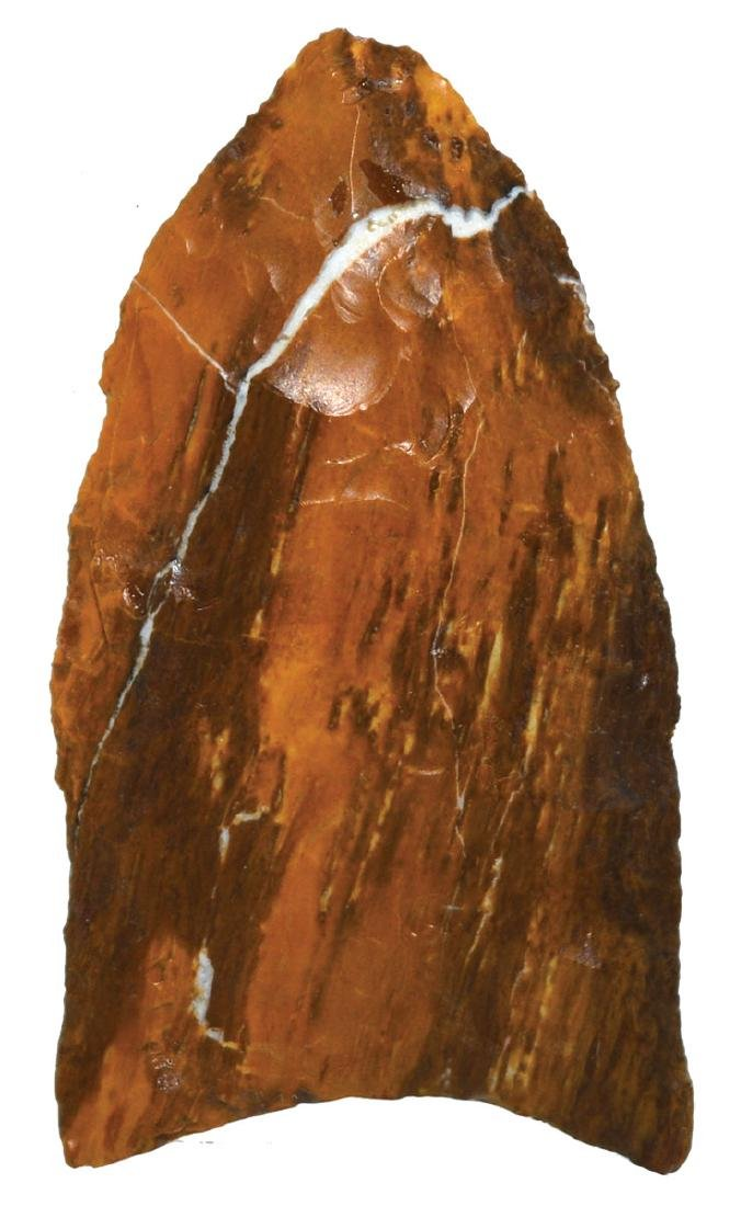 "1 7/8"" Clovis.  Colorado.  Petrified Wood. Bennett and"