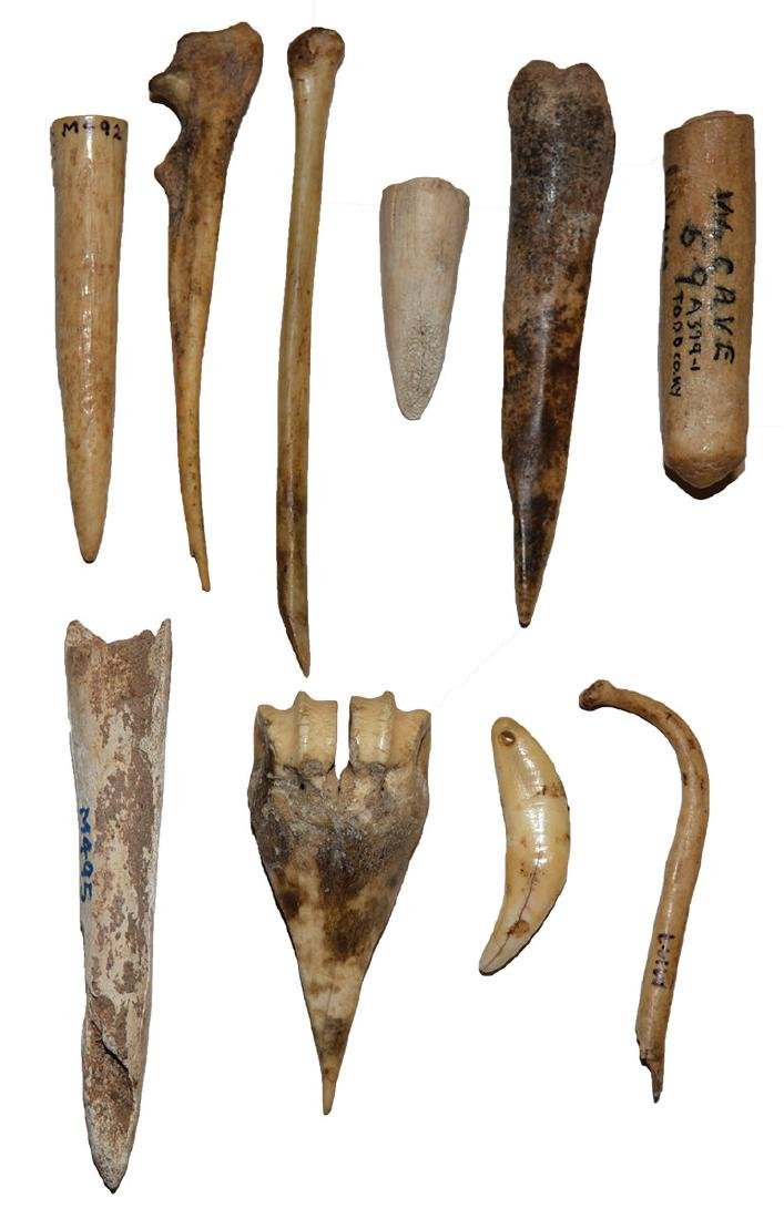 Group of 10 Animal Bone Artifacts.  Watts Cave (Todd