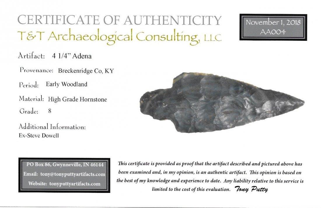 "4 1/4"" Adena.  Breckenridge Co, KY.  Deep Hornstone - 3"