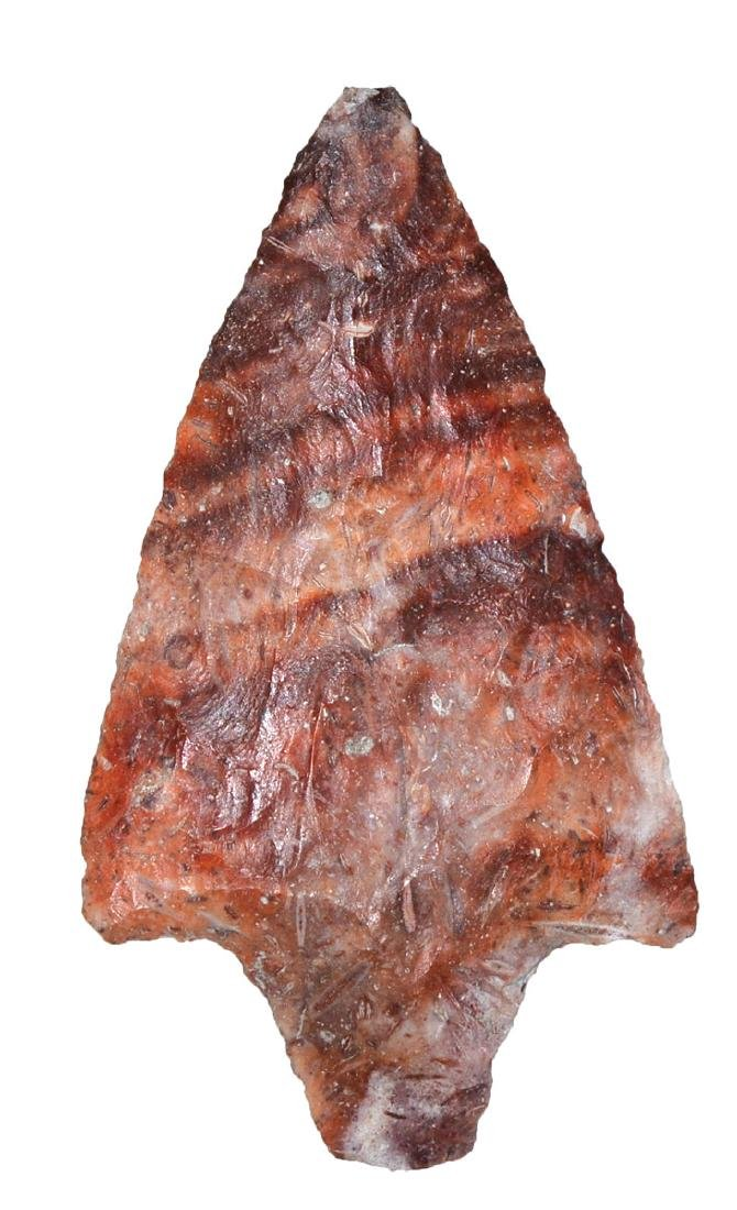 """2 7/8"""" Marion.  FL.  Fossilized Coral.  Colorful. - 2"""