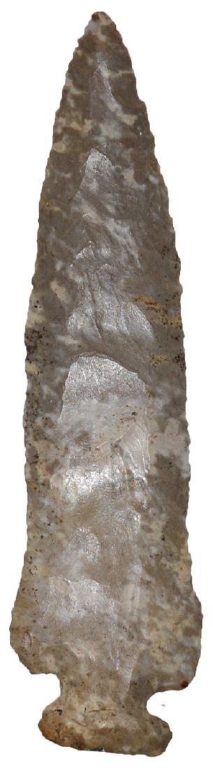 "4 3/8"" Archaic Side Notch.   Rogers COA.  Robertson Co, - 2"