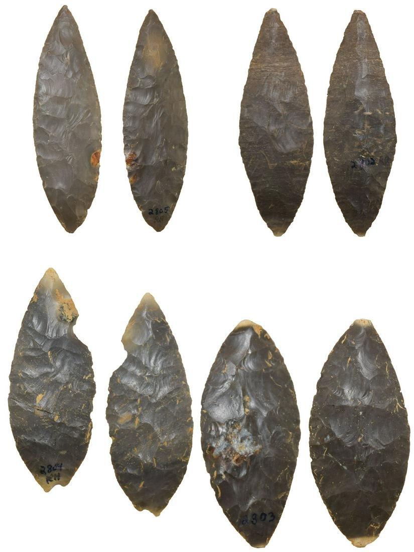 Turkeytail Blade Cache.  Rogers COA.  4 Blades found