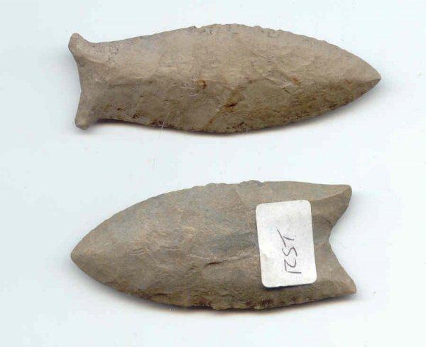 13: Paleo Clovis and Beaver Lake