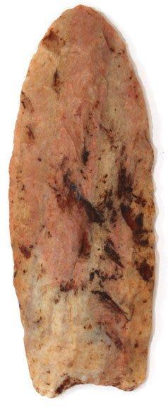 "10: 3 3/4"" Clovis.  Montgomery Co, TN.  Petrified wood"