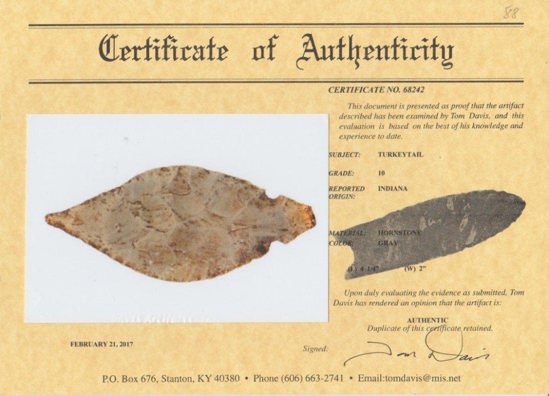 """4 1/4"""" Hornstone Turkeytail.  IN.  Thin.  Davis G10 COA - 3"""