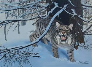 Kirk Stirnweis B 1967 Bobcat