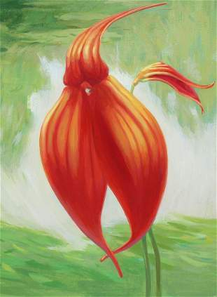 Ren Yu B 1945 Masdevallia veitchiana Orchid