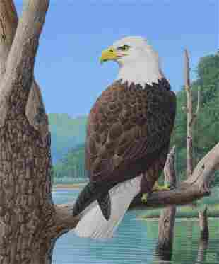 Chuck Ripper B 1929 American Bald Eagle