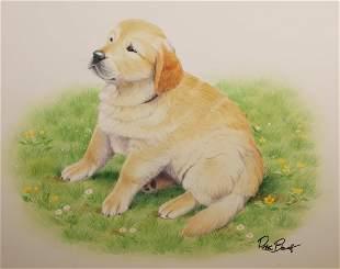 Peter Barrett British B 1935 Puppy Life