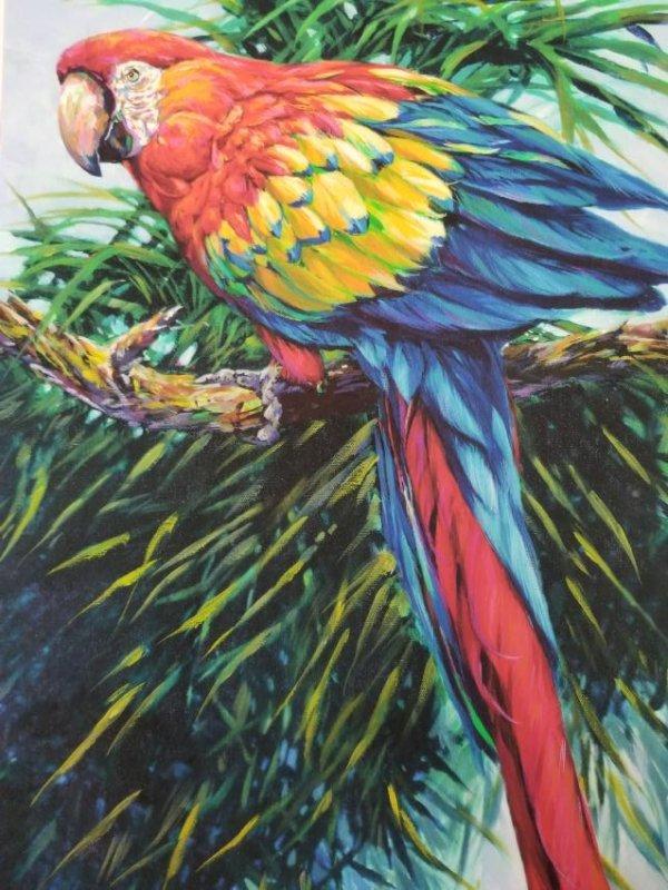Barry Barnett /Artist International -Tropic of Vedra-
