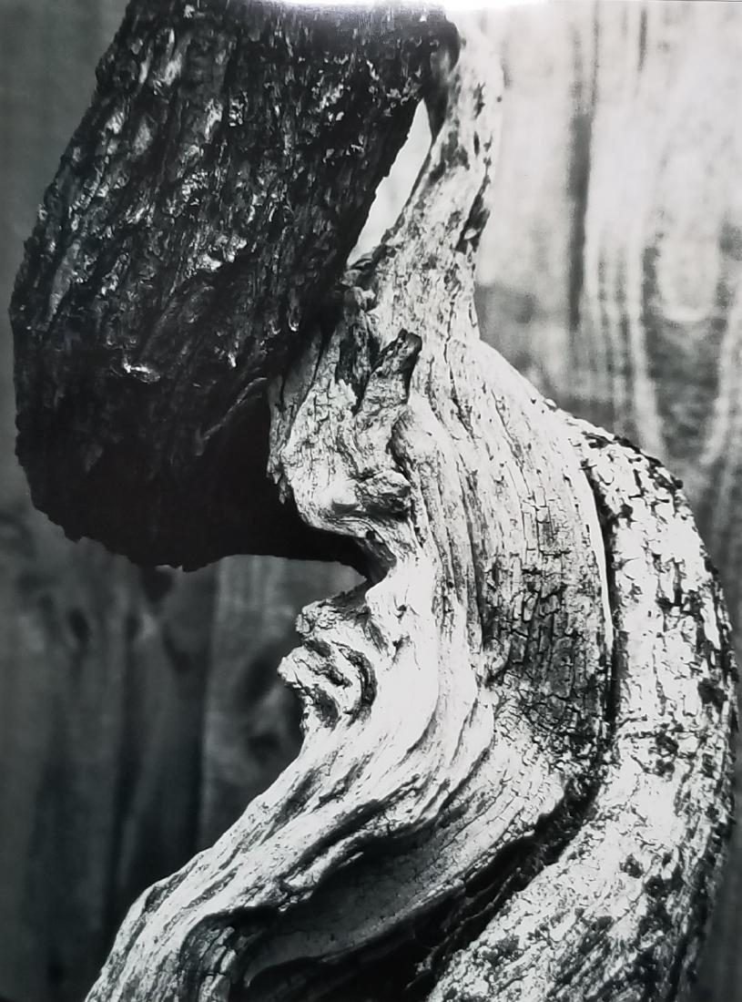 Original Abstract B & W Photo