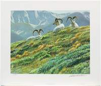 "Robert Bateman's ""Mountain Meadow - Dall Sheep"" Limited"