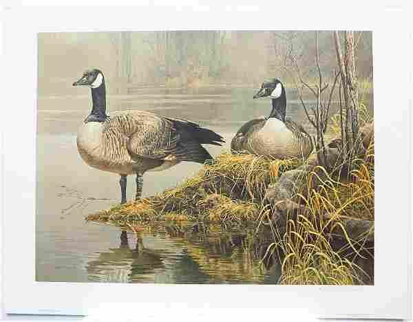 "Robert Bateman's ""Canada Geese - Nesting"" Limited"