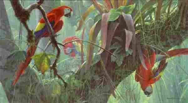 "Robert Bateman's ""Tropical Canopy - Scarlet Macaws"""