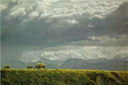 "Robert Bateman's ""Along The Ridge - Grizzly Bear"""