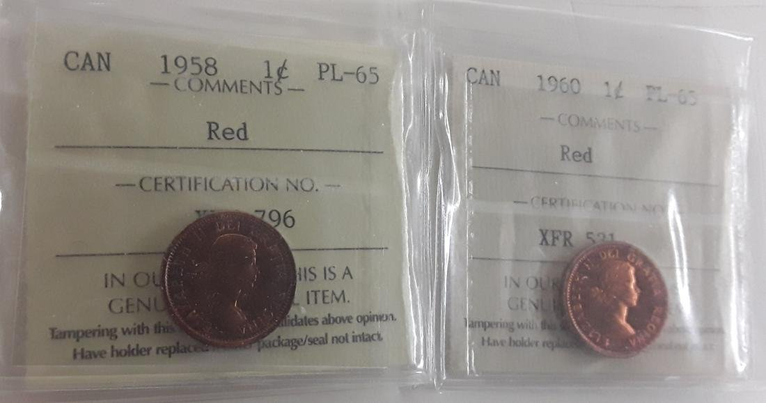 Canadian 1 Cent and 5 Cent Coin Collection - 5
