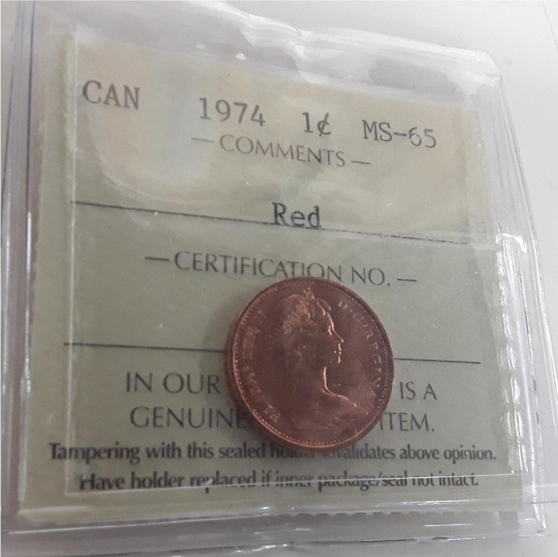 Canadian 1 Cent Coin Collection - 2