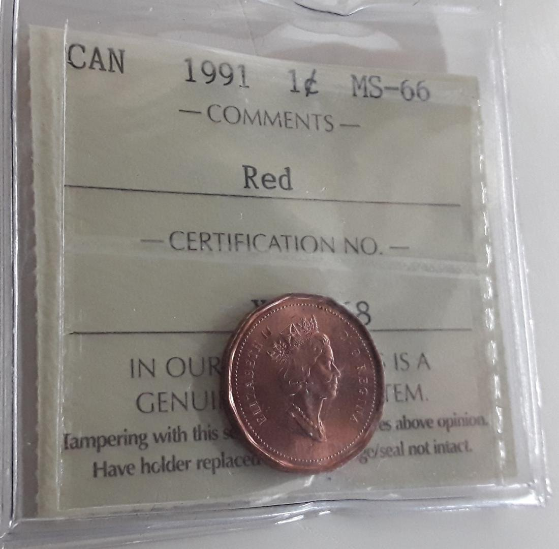 Canadian 1991 1 Cent  Coin Collection - 6