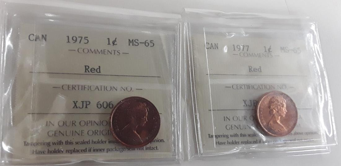 Canadian 1 Cent Coin Collection - 3