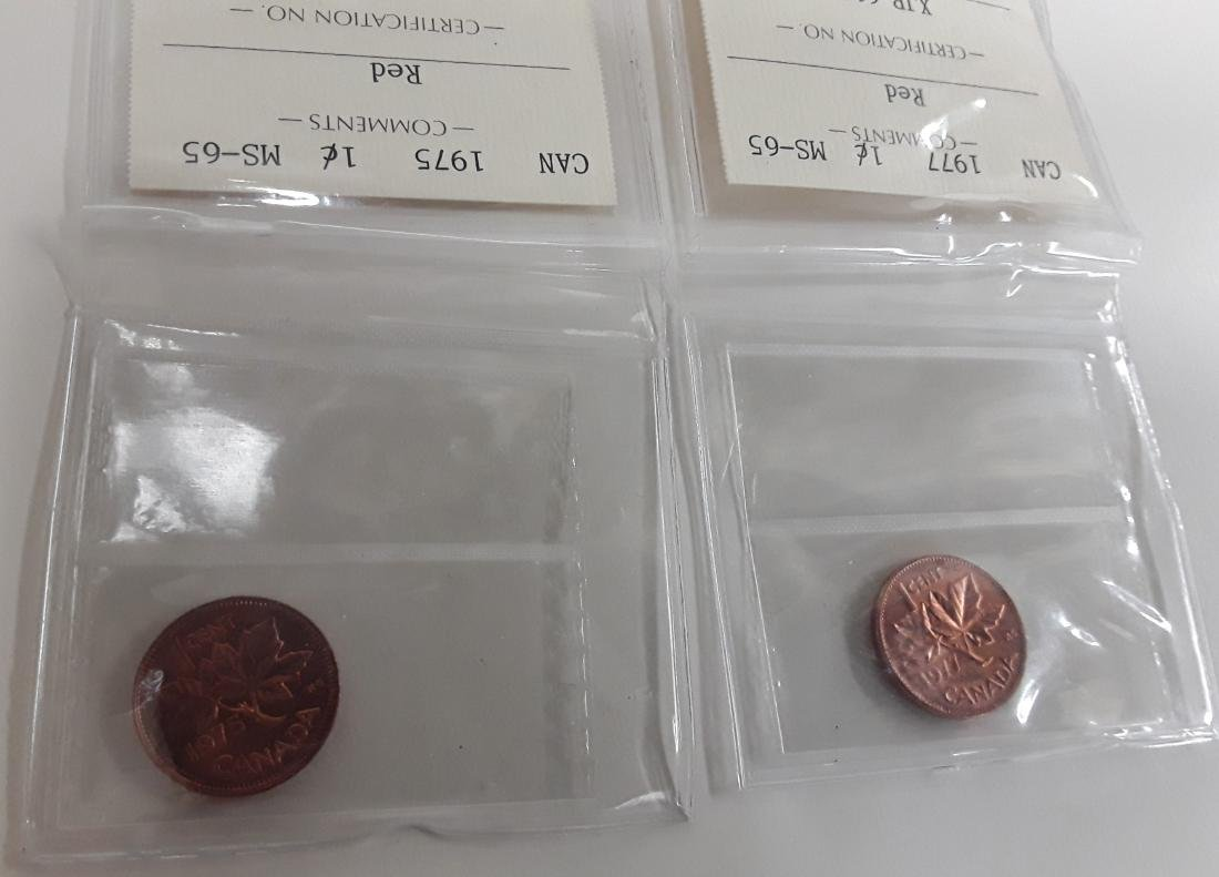 Canadian 1 Cent Coin Collection - 4