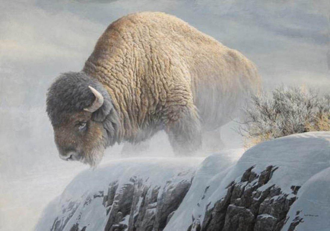"""Robert Bateman's """"Winter Bison"""" Artist Proof Print"""