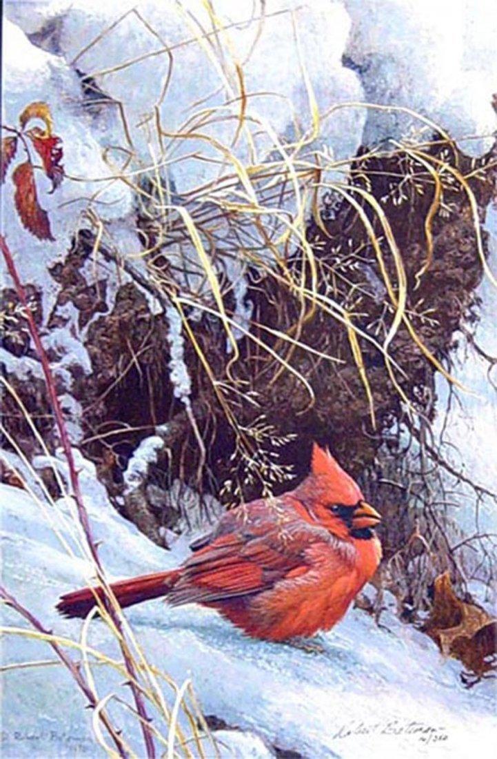 "Robert Bateman's ""Winter Cardinal"" Limited Edition Rigi"