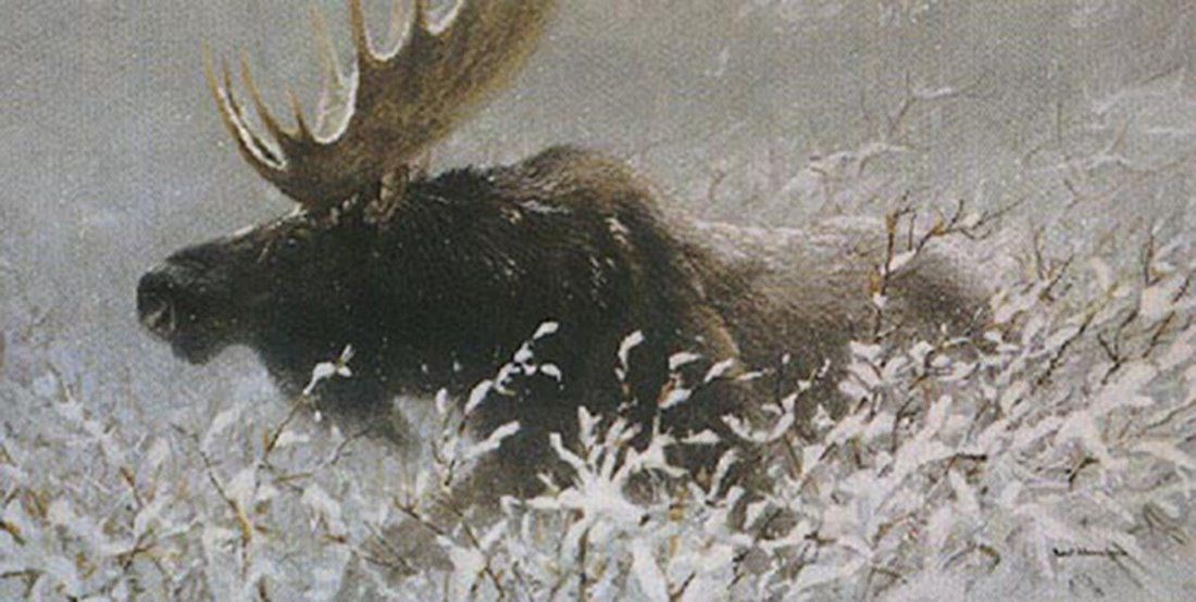 "Robert Bateman's ""Winter Run - Bull Moose"" Limited Edit"