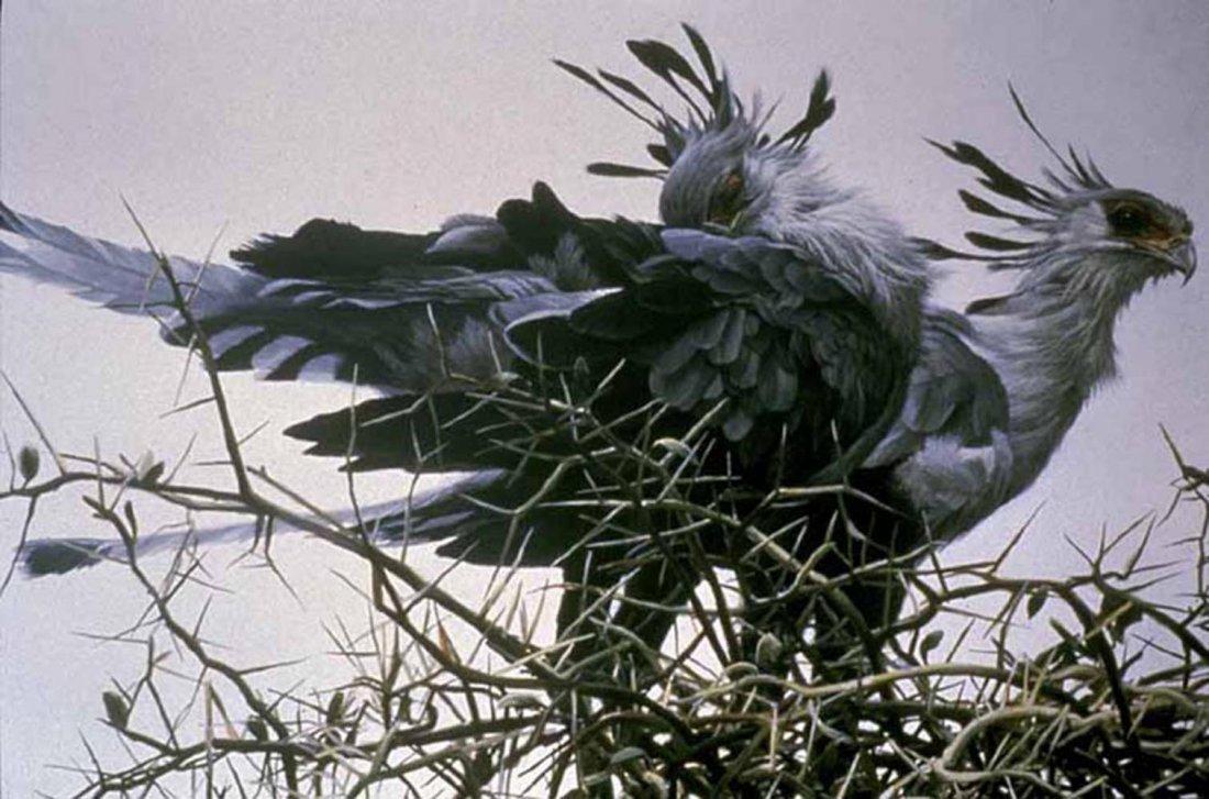 "Robert Bateman's ""At The Nest - Secretary Birds"" Limite"