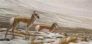 "Robert Bateman's ""Big Country - Pronghorn Antelope"" Lim"