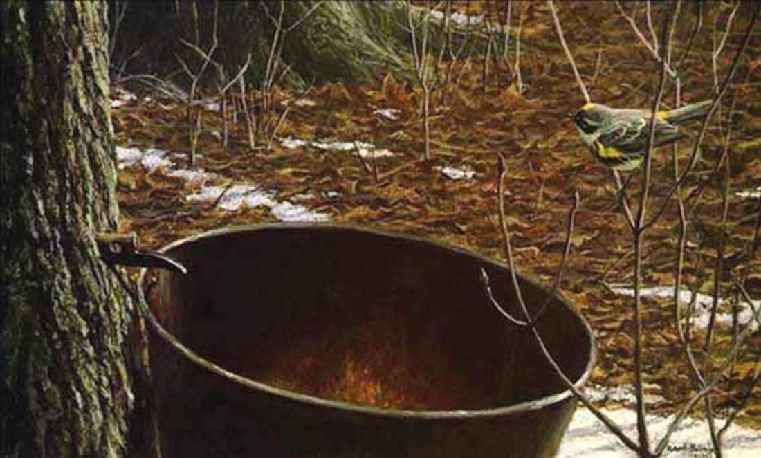 "Robert Bateman's ""Sap Bucket Myrtle Warbler"" Limited Ed"