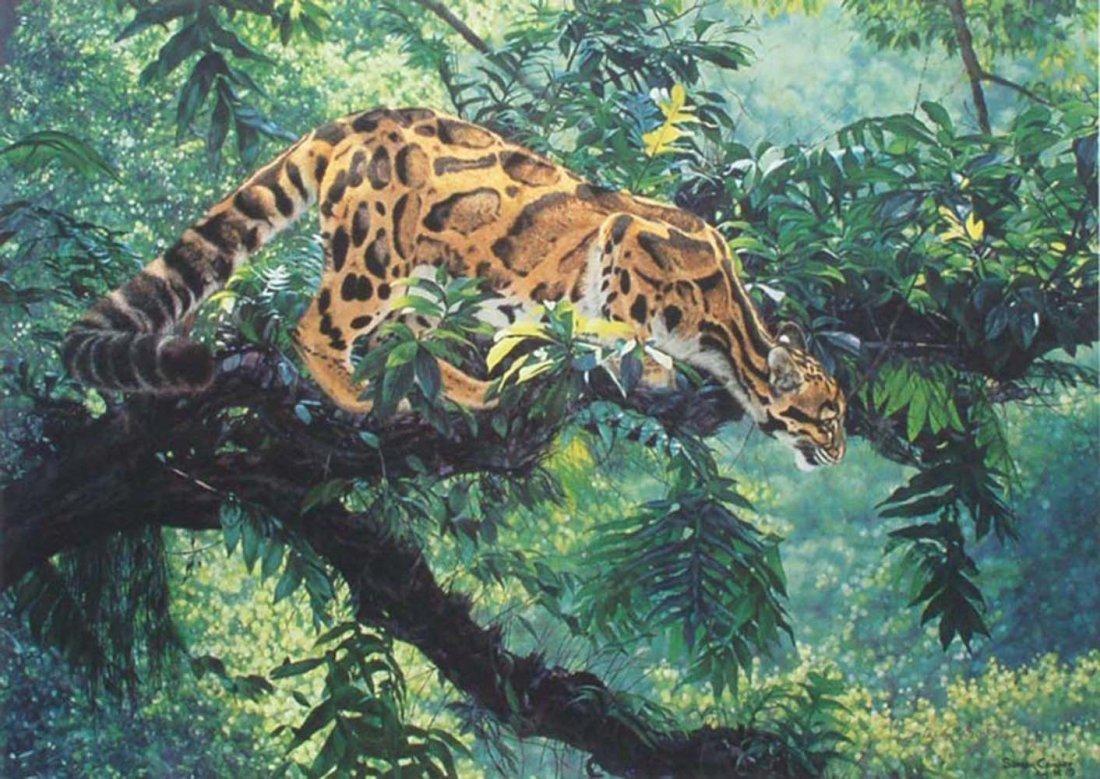 "Simon Combes' ""Jungle Phantom"" Limited Edition Print"