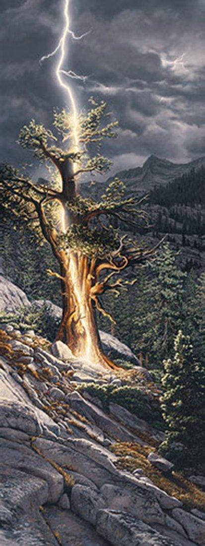 "Stephen Lyman's ""Thunderbolt"" Limited Edition Print"