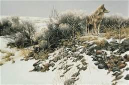 "Robert Bateman's ""Coyote in Winter Sage"" LE Canvas"