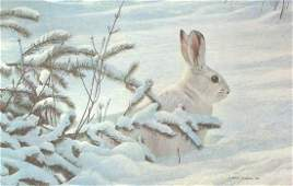 Robert Batemans Winter  Snowshoe Hare  LE Canvas