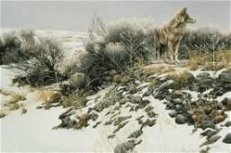 "Robert Bateman's ""Coyote in Winter Sage"" Limited"