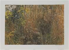 Robert Batemans Marginal Meadow Limited Edition