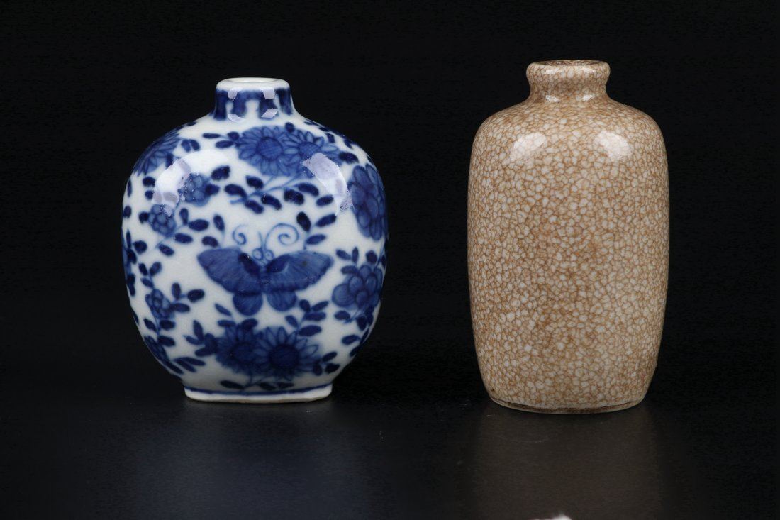 A Ge Glazed Snuff Bottle and A Blue and White Snuff Bot