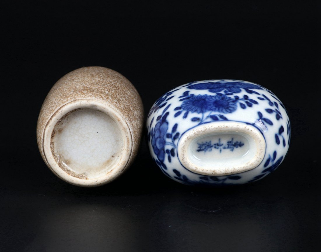 A Ge Glazed Snuff Bottle and A Blue and White Snuff Bot - 7