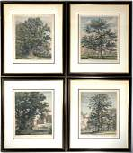 Jacob George Strutt Four Handcolored Engravings of