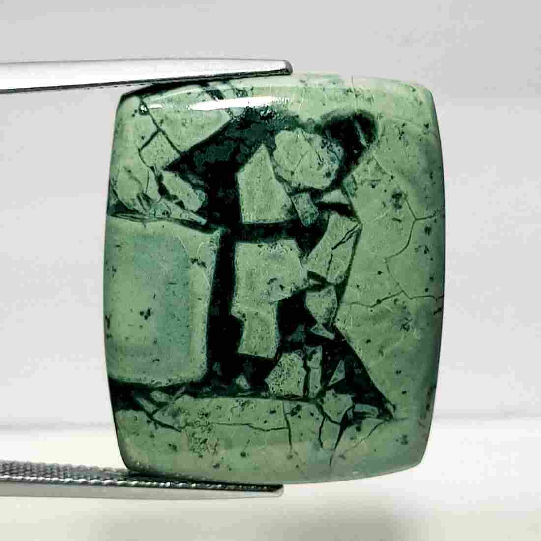 31.00 ct Natural Bracketed Turquoise