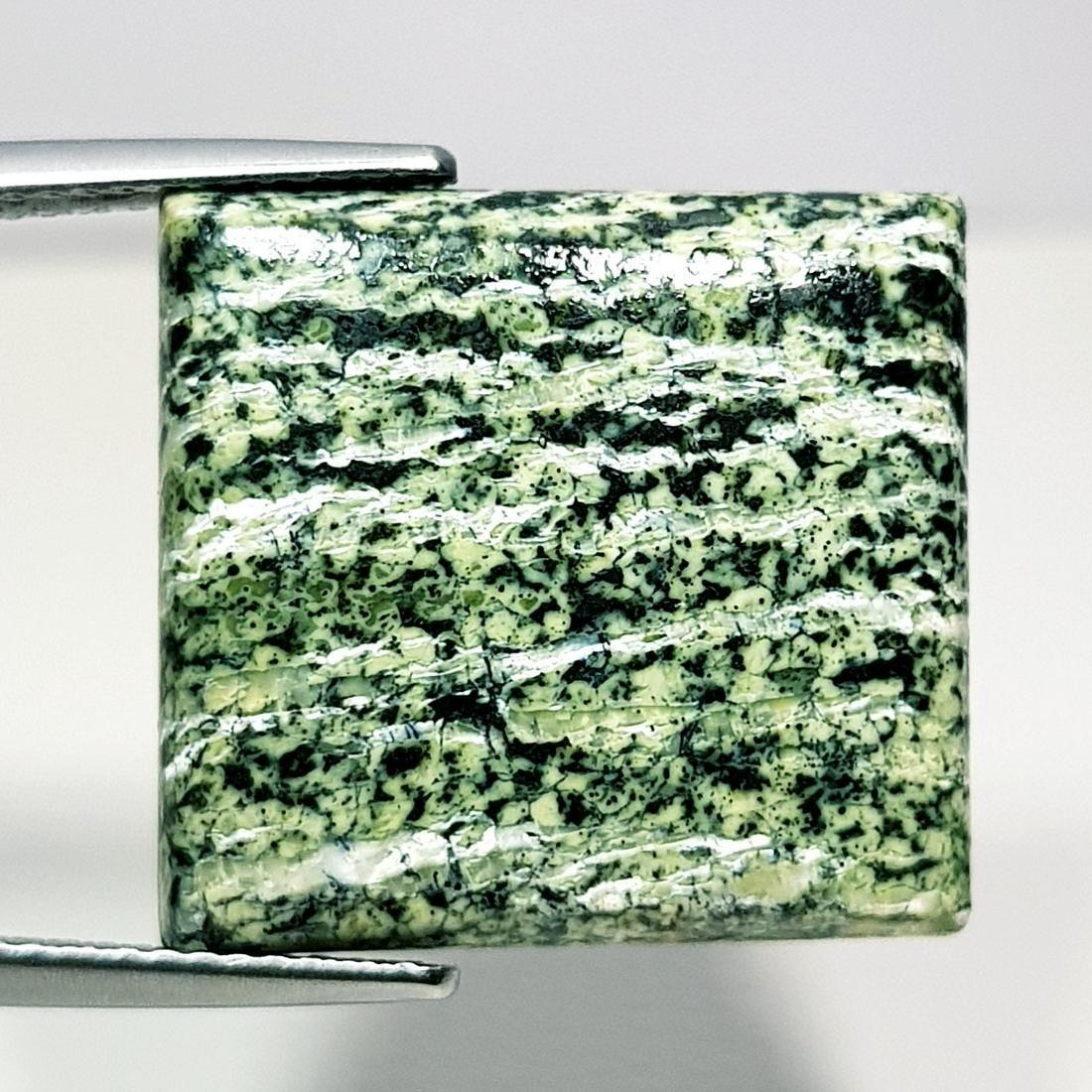 13.70 ct Natural Green Suzi Opal