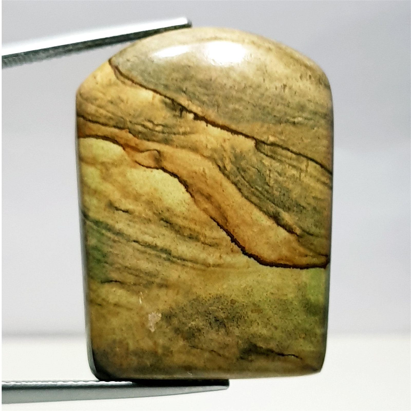 39.25 ct Natural Picture Jasper